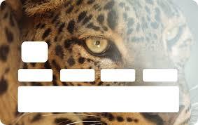 The Leopard Card Vinyl Sticker Tenstickers