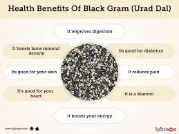 black gram urad dal benefits and its