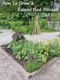 raised bed garden for your veggies