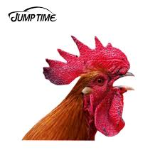 Jump Time 13cm X 12 1cm Rooster Window Sticker Car Decal Vinyl Decal Car Window Laptop Bumper Animal Car Stickers Car Stickers Aliexpress