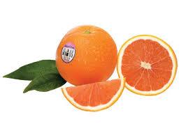 in season cara cara oranges food