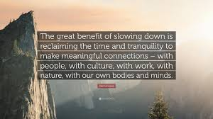 "carl honore quote ""the great benefit of slowing down is"