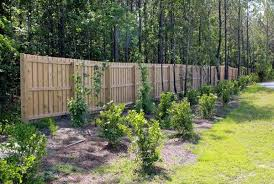 Wilmington Wood Fence Construction Seegars Fence Company