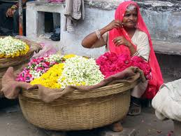 flower seller definition and synonyms of flower seller in the