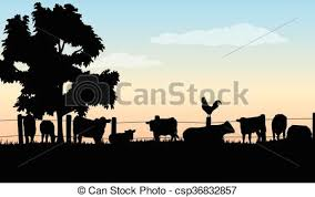 Ranch Silhouettes Silhouettes Of Cattle Barn Tree Rooster Fence And Grass