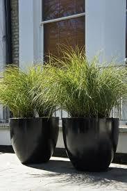 nice simple pots