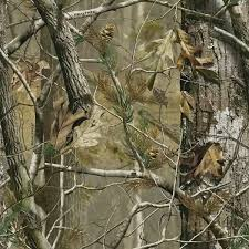 realtree camo graphics pictures