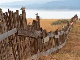 Property Line Issues Good Fences Make Good Neighbors Baker Burton Lundy
