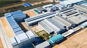 ion of conveyor belts
