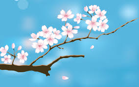 50 spring backgrounds free