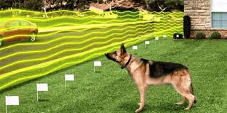 Best Wireless Dog Fence Systems Electric Invisible Fences