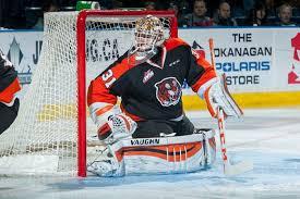 Adin Hill - Hockey's Future