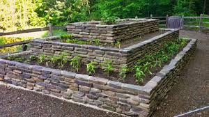 raised garden bed in 8 easy steps