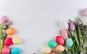 تحميل خلفيات بيض عيد الفصح الوردي الزنبق زهور الربيع عيد الفصح