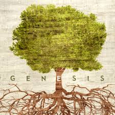Image result for Genesis Bible Study
