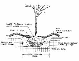 tips for gardening in red clay