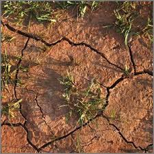 how to improve clay soil loosen and