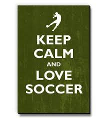 love soccer fridge magnet by seven rays