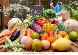 Vegetables Bio Vegetable Garden Organic Food Stock Photo (Edit Now ...