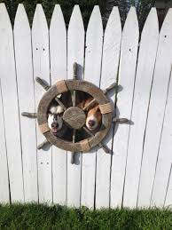 Nautical Fence Window For Dogs Gartentor Garten Hunde