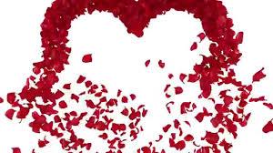 ورد على شكل قلب حب