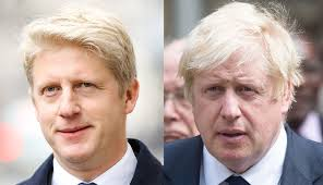 Boris Johnson's MP brother quits politics: 'Torn between family ...