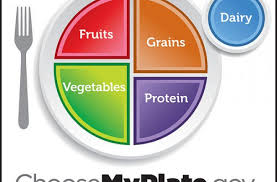 foodista introducing choosemyplate gov