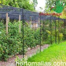 Advantages Of Chicken Wire With Hexagonal Netting By Chickenmalla