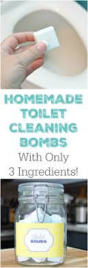 homemade toilet cleaning s