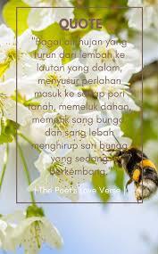 kutipan sharing novel the poet s love verse sani land