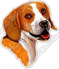 Beagle Dog Pet Canine Breed Animal Pets Car Bumper Vinyl Sticker Decal 4 X5 For Sale Online