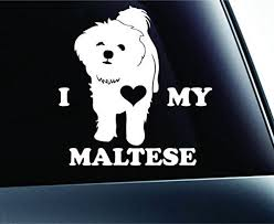 I Love My Maltese Dog Symbol Decal Paw Print Dog Puppy Pet Family Breed Love Car Truck Sticker Window White Expressdecor Truck Stickers Maltese Maltese Dogs