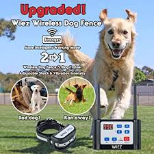 Wiez Wireless Dog Fence Electric Dog Training Collar 2 In 1 Dual Antenna Adjustable Range Control 100 990 Ft Adjustable Warning Strength Rechargeable Harmless For All Dogs For Outdoor Use Buy Products Online
