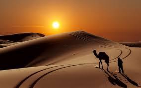 تحميل خلفيات الرمال الصحراء غروب الشمس الكثبان الرملية الجمال