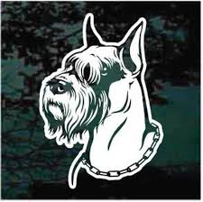 Sweet Miniature Schnauzer Head Car Window Decals Decal Junky