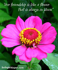 "our friendship is like a flower that is always in bloom"" flowers"