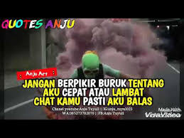 quotes anju newbie berkelas