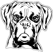 Amazon Com Boxer Vinyl Sticker Decal Dog Breed Sticker For Tumblers Laptops Car Windows Boxer Dog Sticker Kitchen Dining