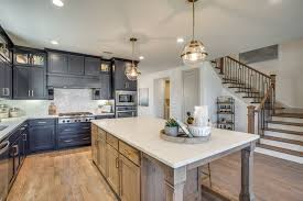 shaddock homes business plano d