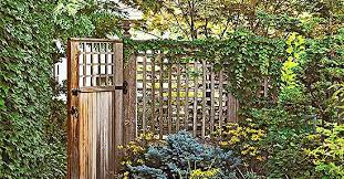Landscaping Ideas For Privacy Better Homes Gardens