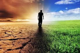 Las enfermedades que extendemos por maltratar al planeta ...