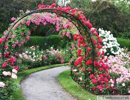 arches and beautiful yard landscaping ideas