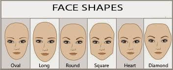 the shape of your eyebrows and face