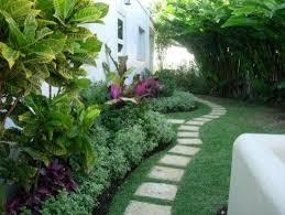 Fence Border Stepping Stones Tropical Backyard Landscaping Landscape Design Tropical Landscaping