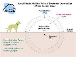 Pet Safe How Dogwatch Makes This Happen