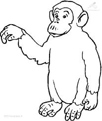 Kleurplaat Dieren Aap Kleurplaat Gorilla