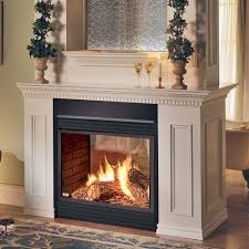 two sided fireplace napoleon 2