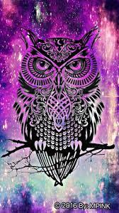 night owl hipster wallpaper wallpaper
