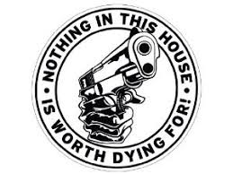 Nothing In This House Is Worth Dying For Funny Die Cut Vinyl Decal Sticker