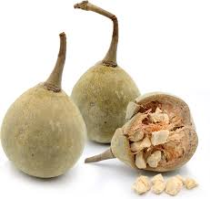 baobab information recipes and facts